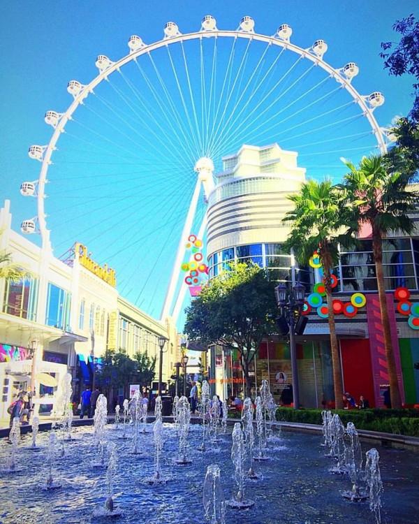 Thanksgiving Dinner In Las Vegas 2019  Las Vegas Spring Break 2019 Fun Things to Do in March