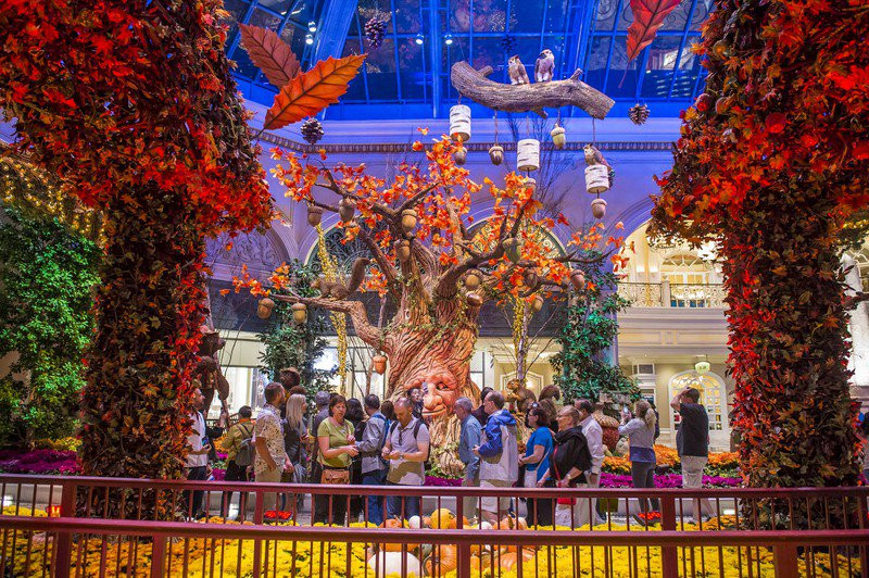 Thanksgiving Dinner In Las Vegas 2019  The Best U S Cities For A Thanksgiving Getaway In 2019