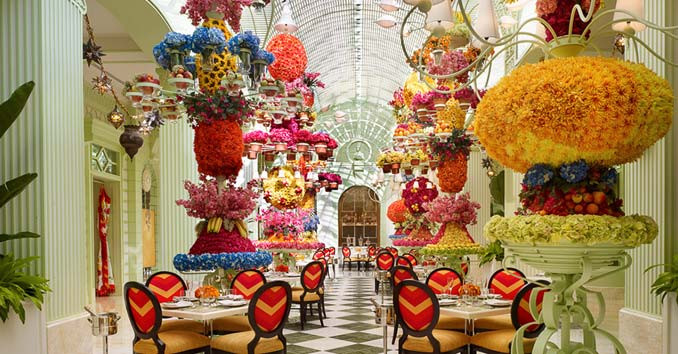 Thanksgiving Dinner Las Vegas  Las Vegas Thanksgiving Buffets Top Thanksgiving Buffets