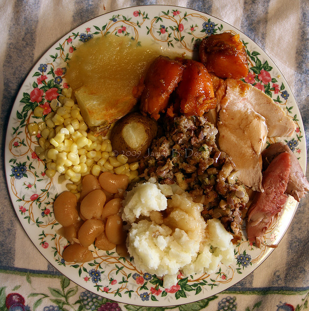 Thanksgiving Dinner Plate  Turkey and Beer Day