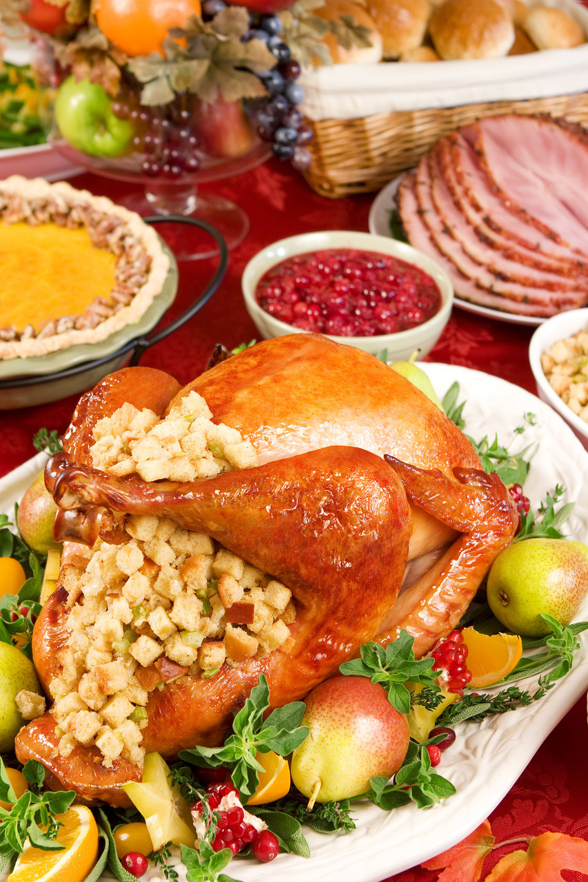 Thanksgiving Dinner Recipes  Christmas Dinner Party Menu