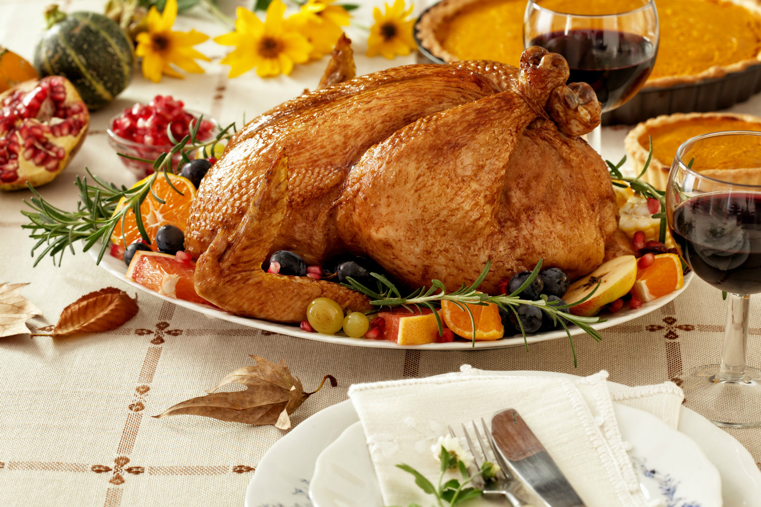 Thanksgiving Dinner Without Turkey  Food production startup promises meat without murder by