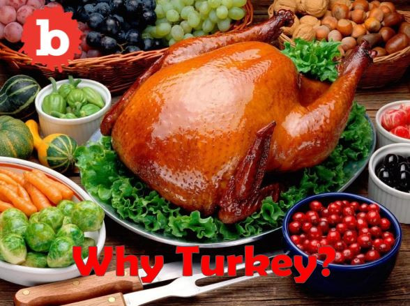 Thanksgiving Main Dishes Not Turkey  Turkey is the Main dish for the Thanksgiving Day Meal but