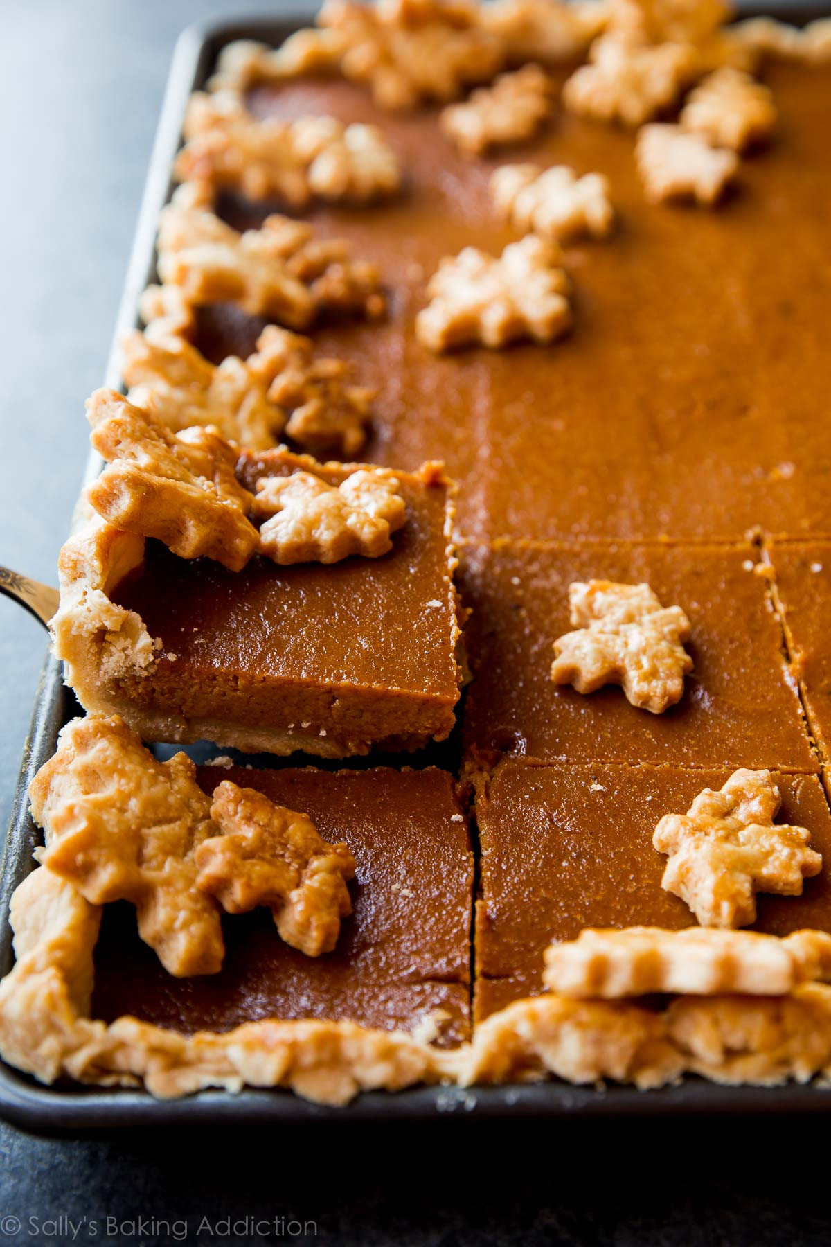 Thanksgiving Pumpkin Pie Recipe  Pumpkin Slab Pie Feeds a Crowd Sallys Baking Addiction