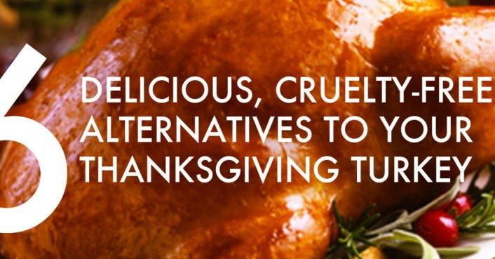 Thanksgiving Turkey Alternatives  6 cruelty free alternatives to a real dead bird for your