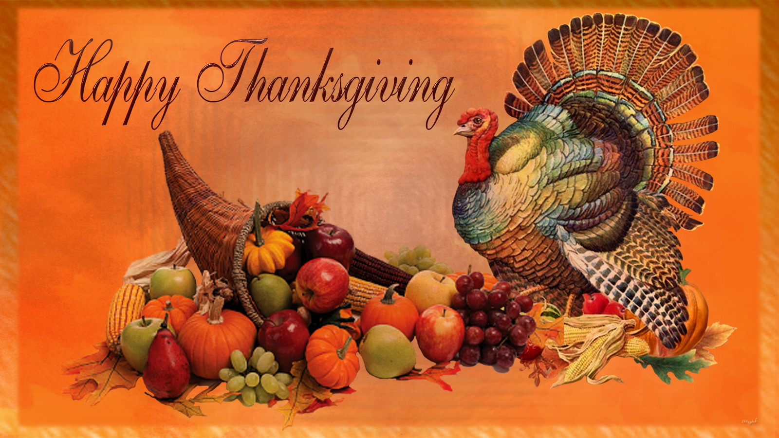 Thanksgiving Turkey Background  Talking Turkey National Security – and Growing Our Own Food