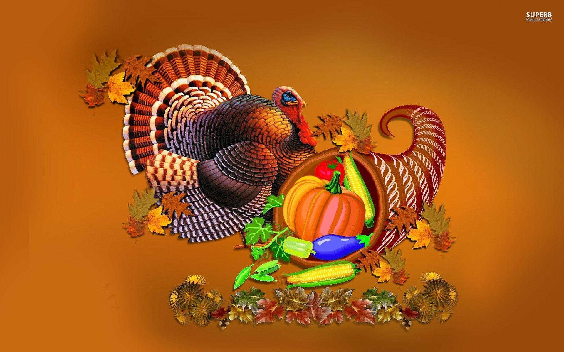 Thanksgiving Turkey Background  Turkey Wallpapers Thanksgiving Wallpaper Cave