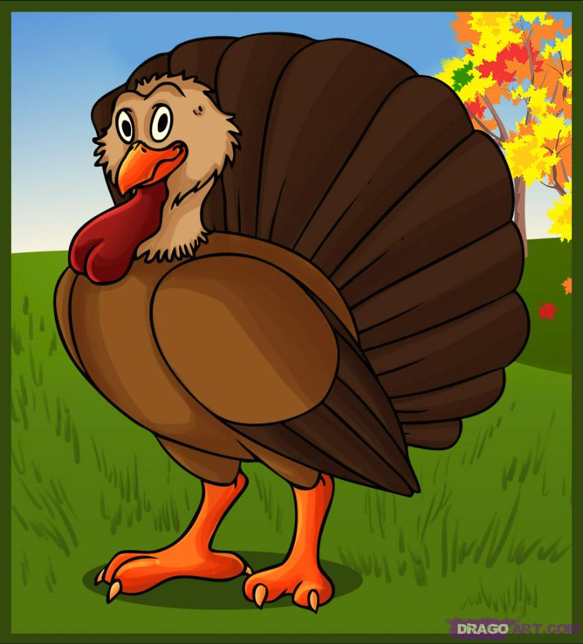 Thanksgiving Turkey Drawing  How to Draw a Cartoon Turkey Step by Step Cartoon