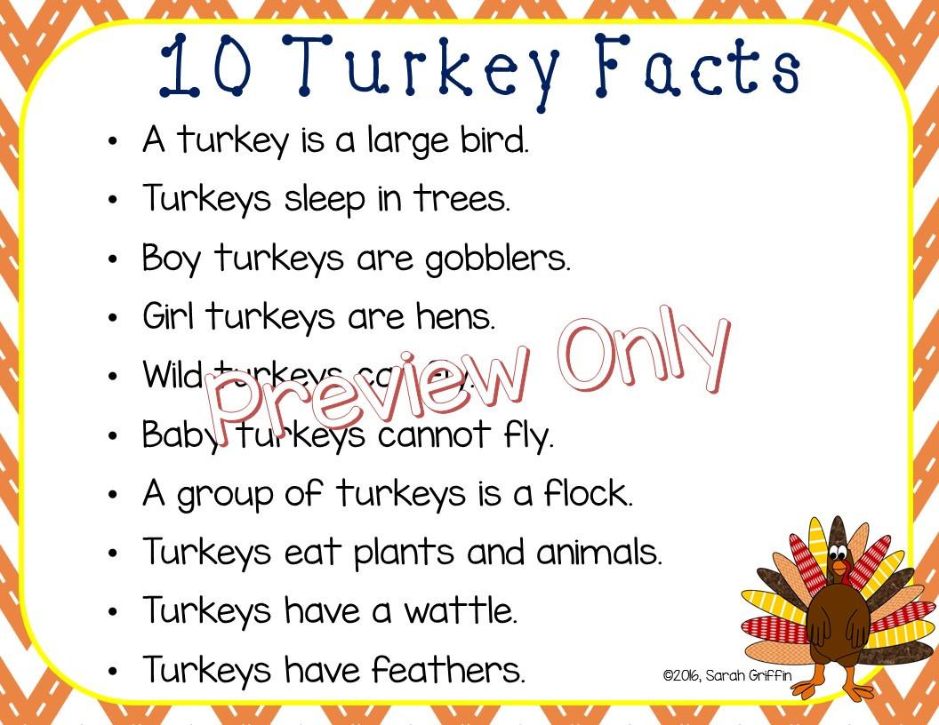 Thanksgiving Turkey Facts  Daughters and Kindergarten Ten Turkey Facts for Kids