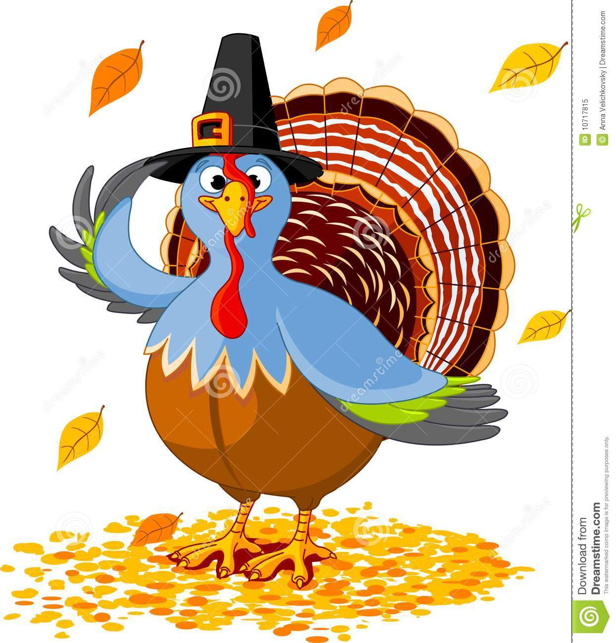 Thanksgiving Turkey Picture  Thanksgiving Turkey stock vector Illustration of nature