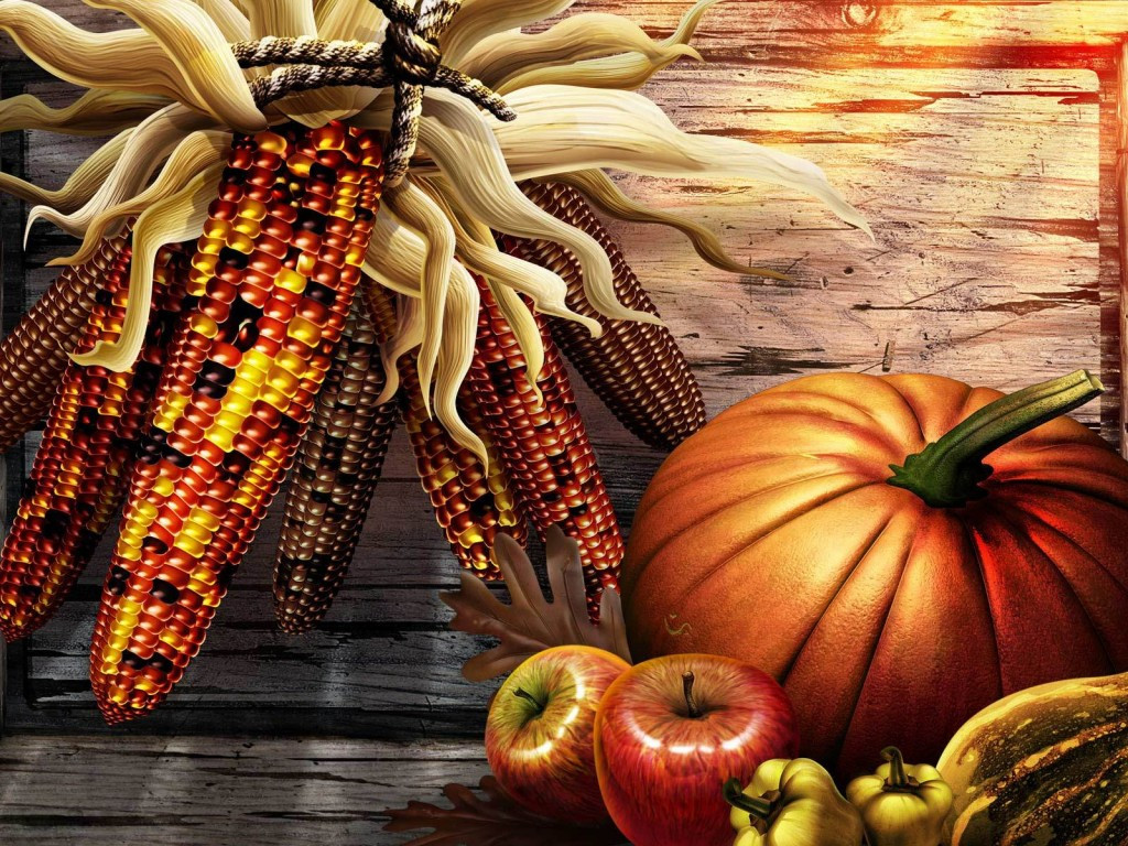Thanksgiving Turkey Pictures  Thanksgiving Holiday Wallpaper 3581