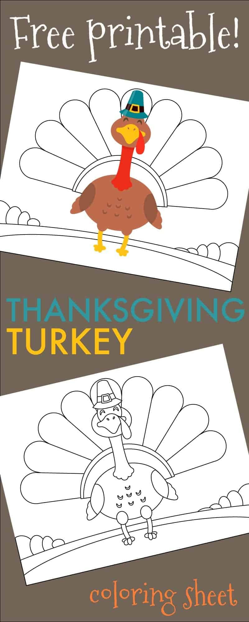 Thanksgiving Turkey Printable  Thanksgiving Turkey Coloring Sheet Free Printable 730