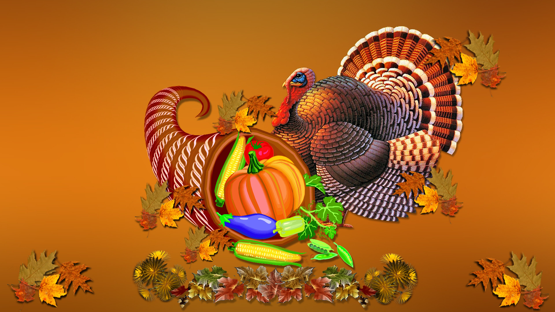 Thanksgiving Turkey Wallpaper  25 Happy Thanksgiving Day 2012 HD Wallpapers – Designbolts
