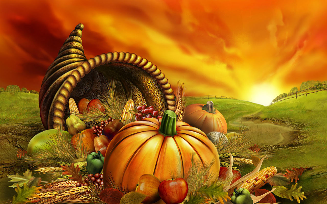 Thanksgiving Turkey Wallpaper  Thanksgiving wallpaper Harry styles 2013
