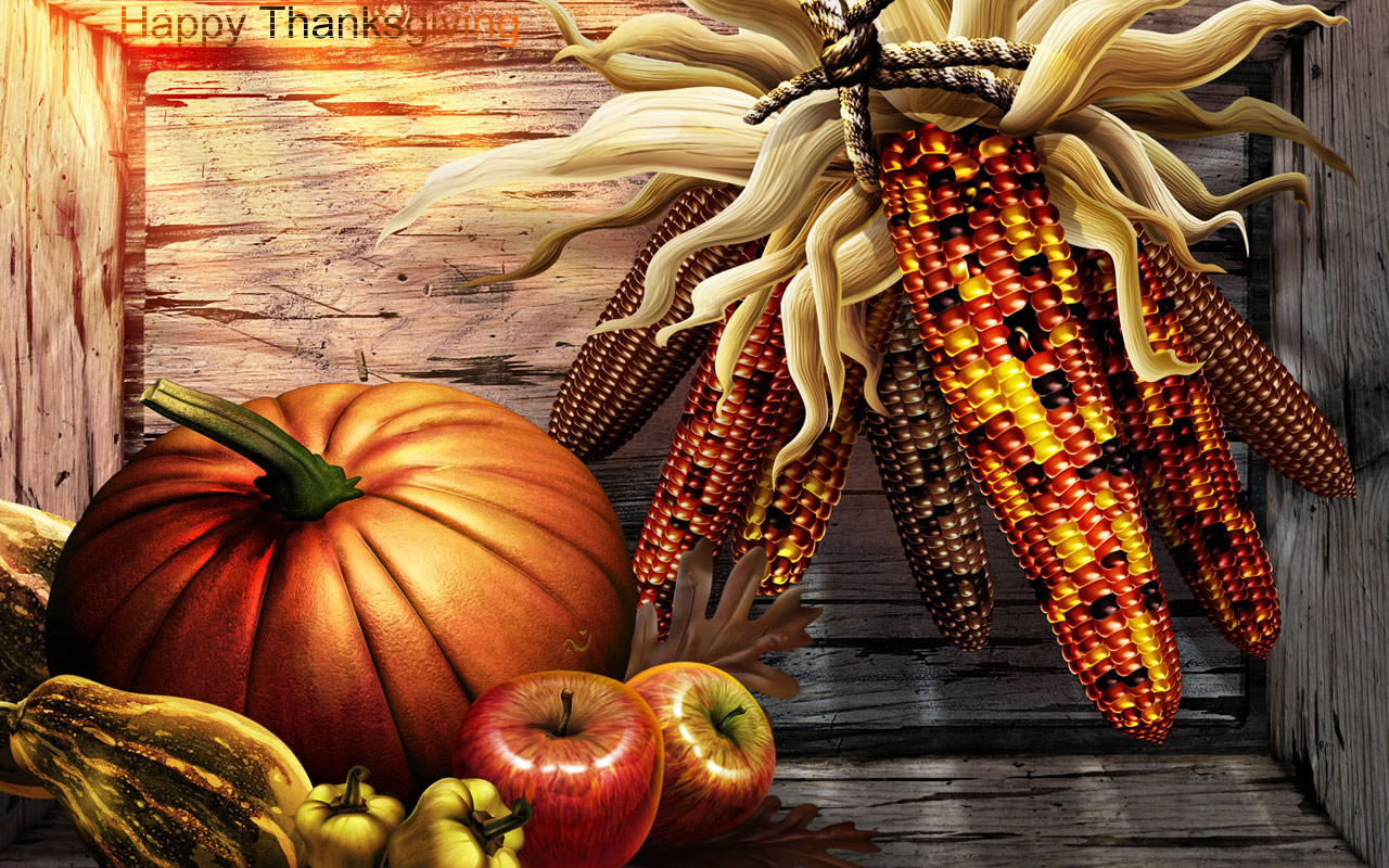 Thanksgiving Turkey Wallpaper  kosldsouuss 2008 Thanksgiving Wallpaper