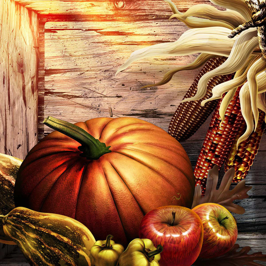 Thanksgiving Turkey Wallpaper  Free Thanksgiving Wallpapers for iPad Bumper Harvest