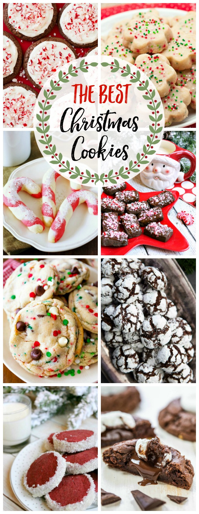 The Best Christmas Cookies  The Best Christmas Cookie Recipes and 200 Other