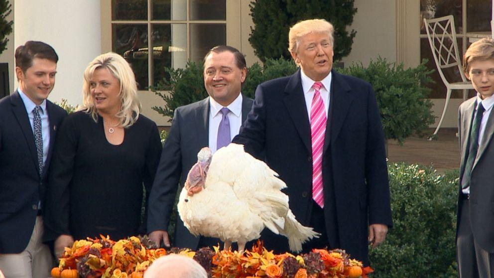 Trump Thanksgiving Turkey  Trump pardons his 1st Thanksgiving turkey Video ABC News