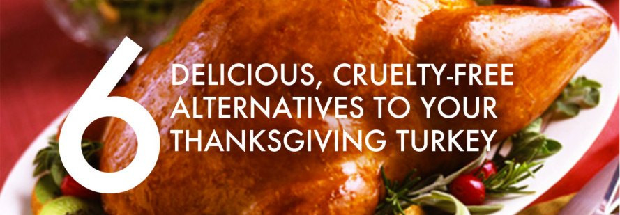 Turkey Alternatives Thanksgiving  Field Roast Grain Meat Inhabitat – Green Design