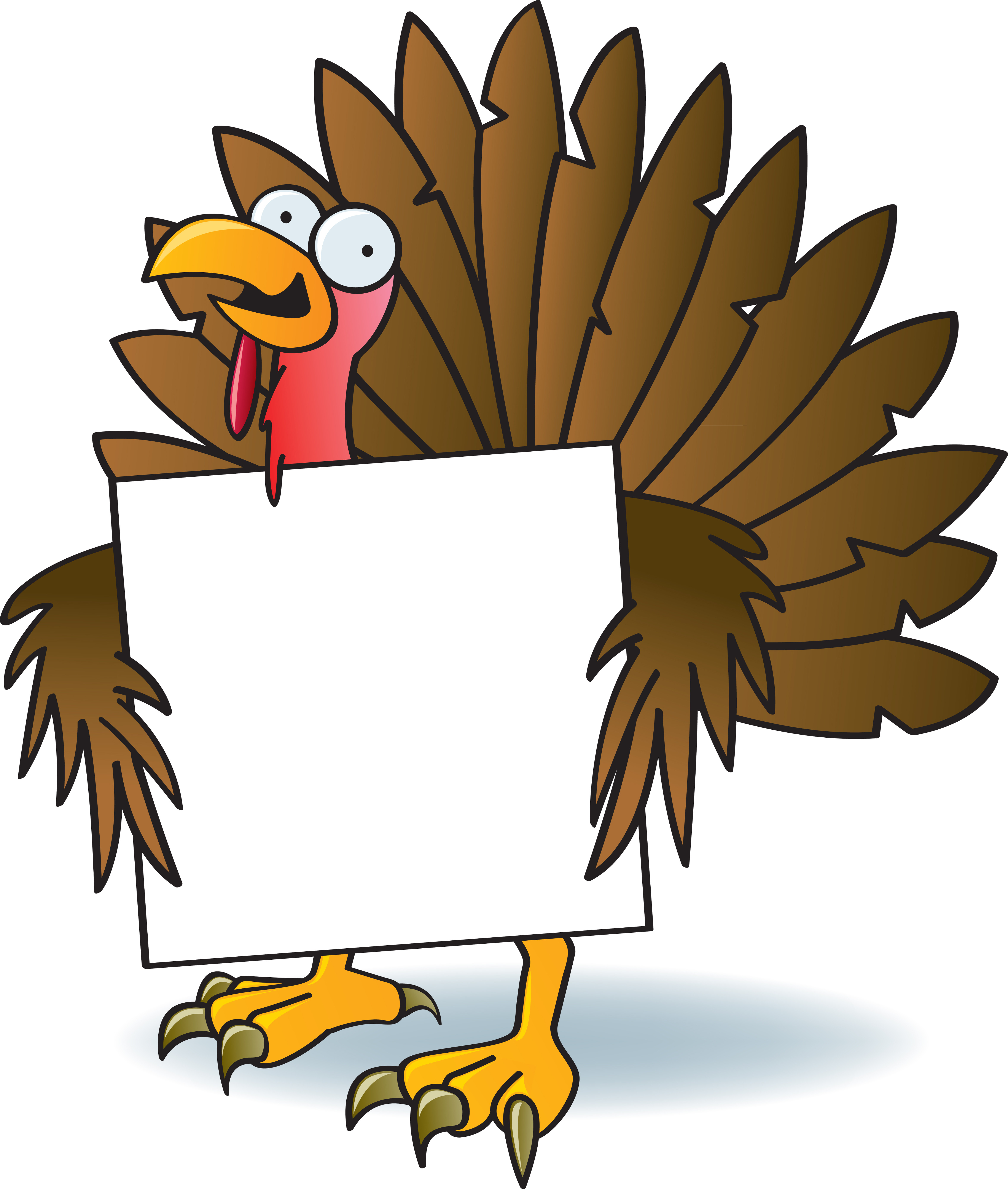 Turkey Cartoon Thanksgiving  Illustration Vector by Jamie Slavy at Coroflot