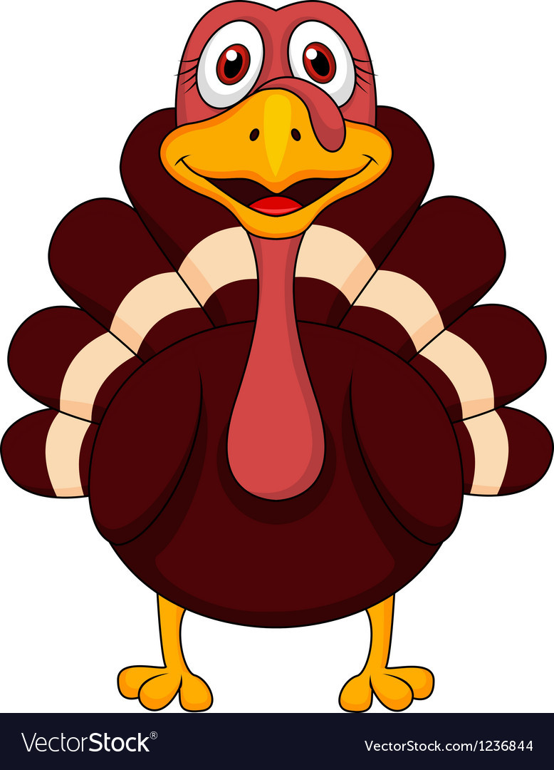 Turkey Cartoon Thanksgiving  Turkey cartoon Royalty Free Vector Image VectorStock