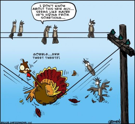 Turkey Cartoons Thanksgiving  Whimsically Homemade Wordless Wednesday Thanksgiving Humor