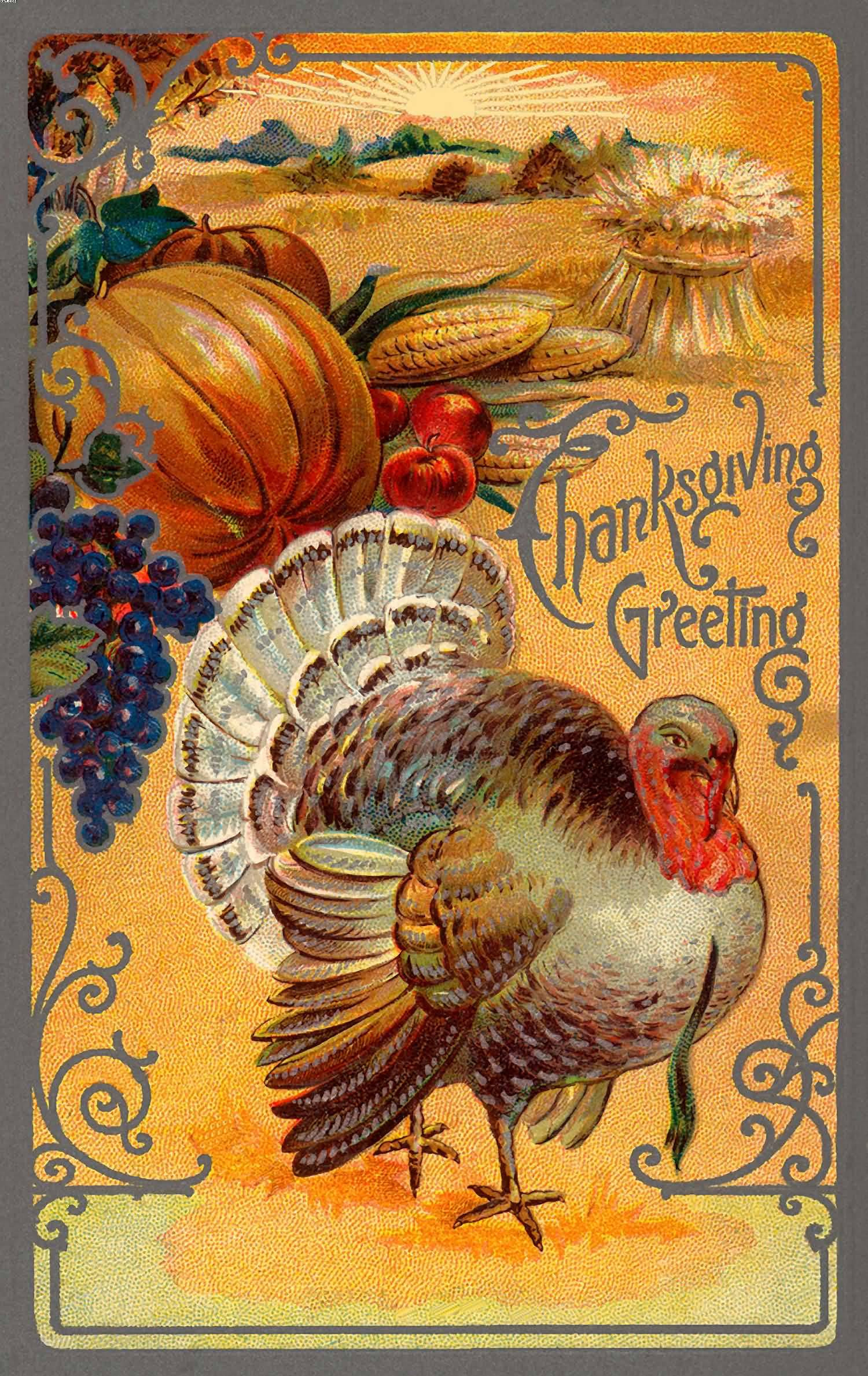 Turkey Happy Thanksgiving  70 Best Happy Thanksgiving Day Wish