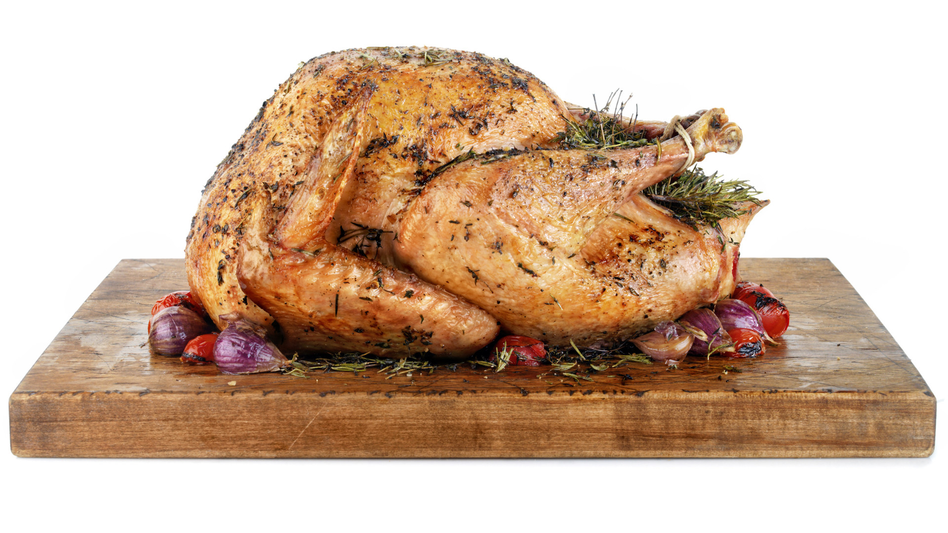 Turkey Hotline Thanksgiving  Turkey hotline is open to help fix your holiday bird blunders