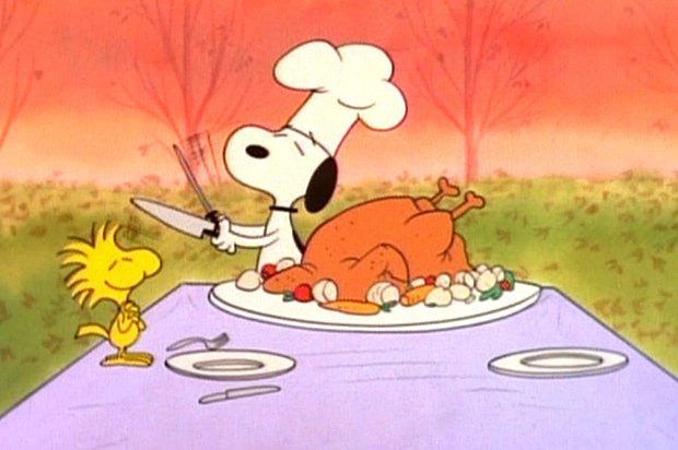 "Turkey Hotline Thanksgiving  ""Can I baste my turkey with suntan lotion "" and 11 other"