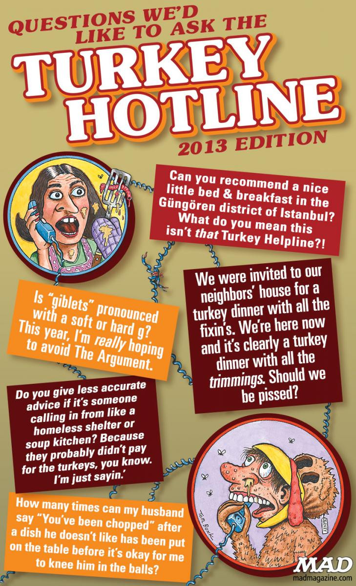 Turkey Hotline Thanksgiving  Questions We d Like to Ask the Turkey Hotline — 2013