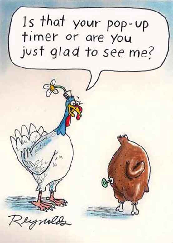 Turkey Humor Thanksgiving  Thanksgiving Turkey Glad to See Me