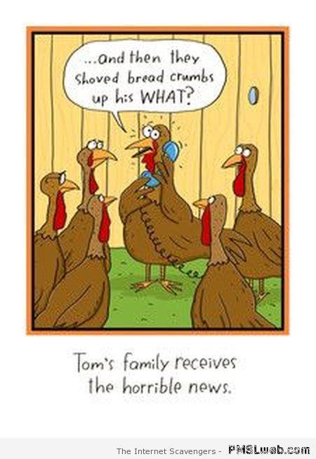 Turkey Humor Thanksgiving  Funny Thanksgiving Turkey