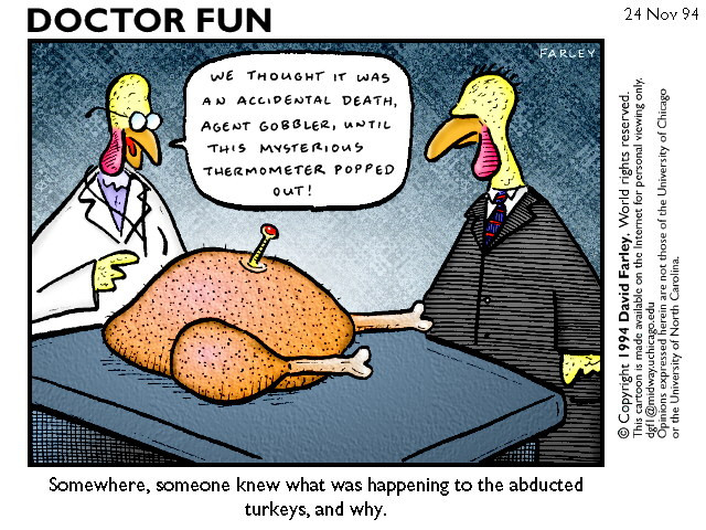 Turkey Jokes Thanksgiving  More Humorous Thanksgiving Cartoons for Nurses NurseBuff