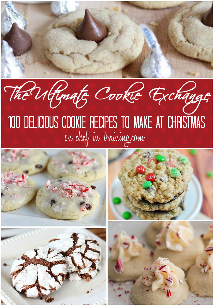 Unique Christmas Cookies For Cookie Exchange  100 MORE Cookie Exchange Ideas
