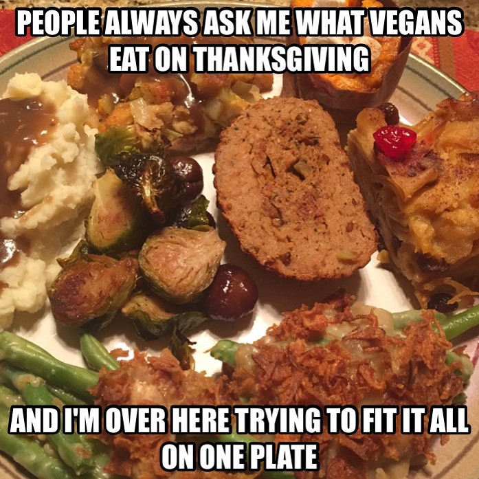 Vegan Thanksgiving Memes  A soy Bean Thanksgiving and a Noodle Pudding Miracle
