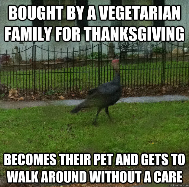 Vegan Thanksgiving Memes  Bought By A Ve arian Family For Thanksgiving Funny Meme