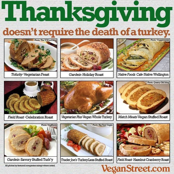 Vegan Thanksgiving Memes  1000 images about informative on Pinterest