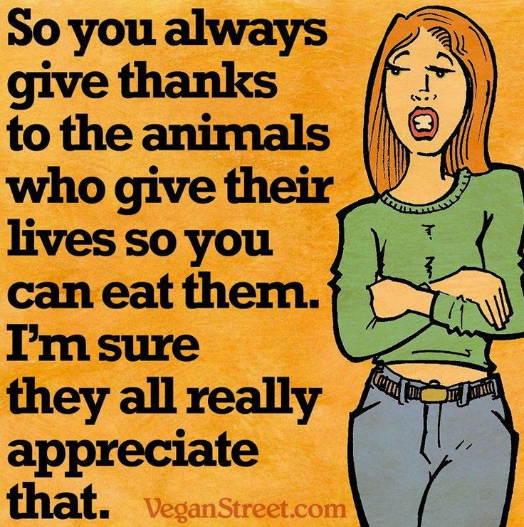 Vegan Thanksgiving Memes  198 best images about Vegan memes on Pinterest