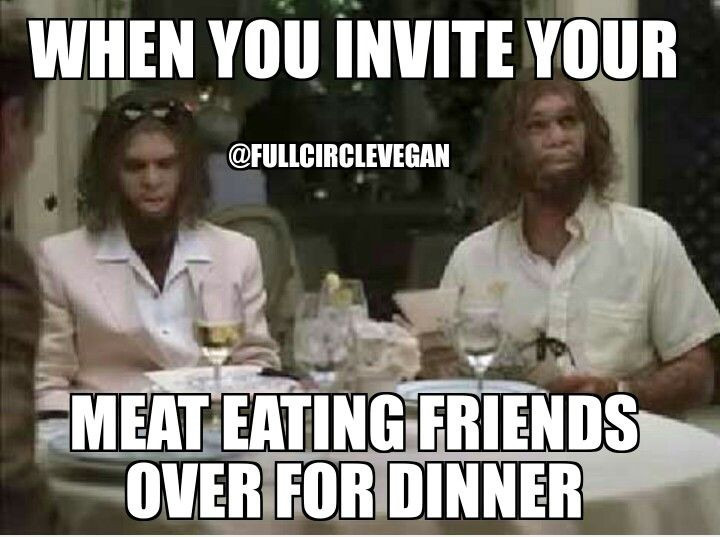 Vegan Thanksgiving Memes  my memes funny vegan memes