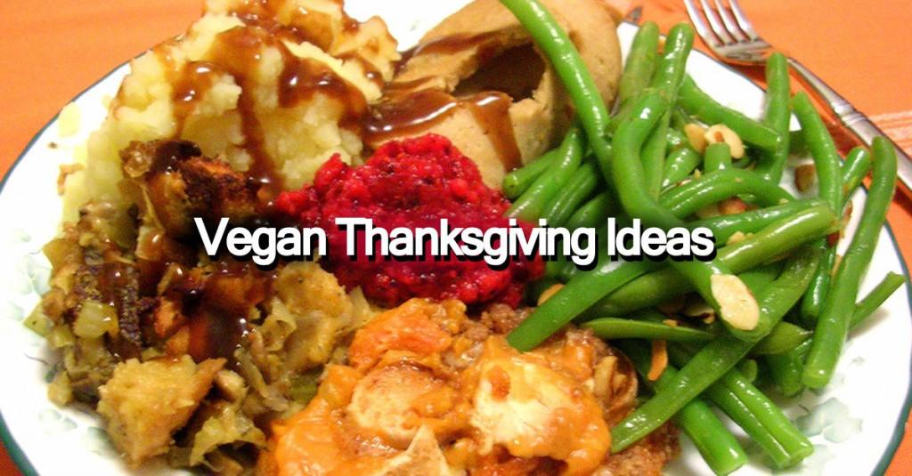 Vegetarian Thanksgiving Ideas  Vegan Thanksgiving Ideas Save The Turkeys