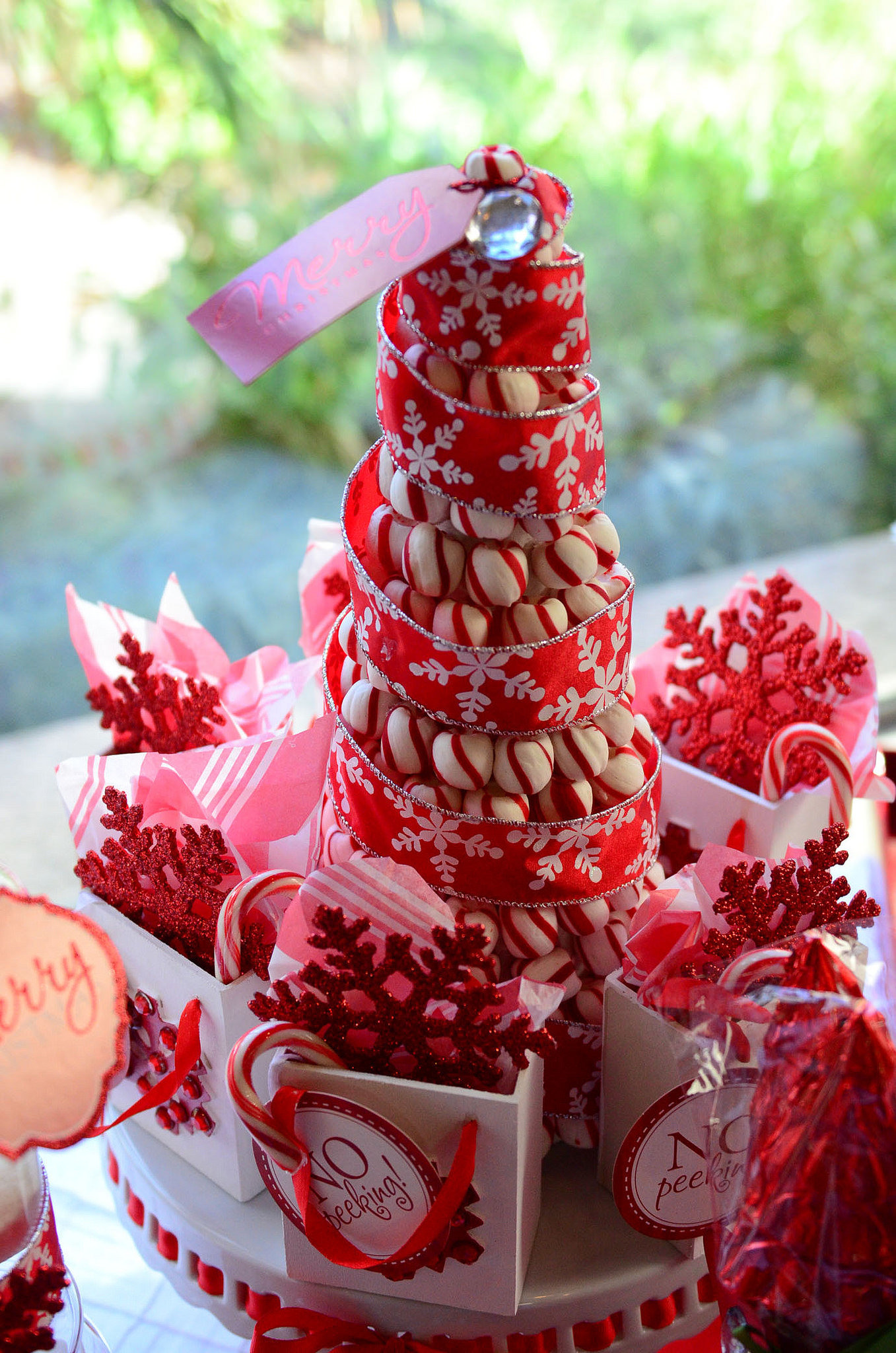 White Christmas Candy  Glittering Red & White Christmas Party