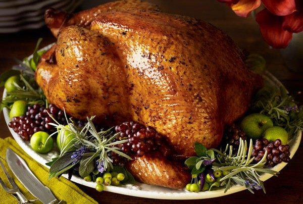 Why Do We Eat Turkey For Thanksgiving  The Real Reason We Eat Turkey on Thanksgiving