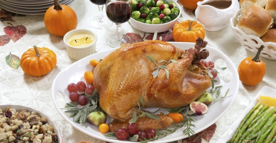 Why Do We Eat Turkey For Thanksgiving  The Reason We Eat Turkey on Thanksgiving