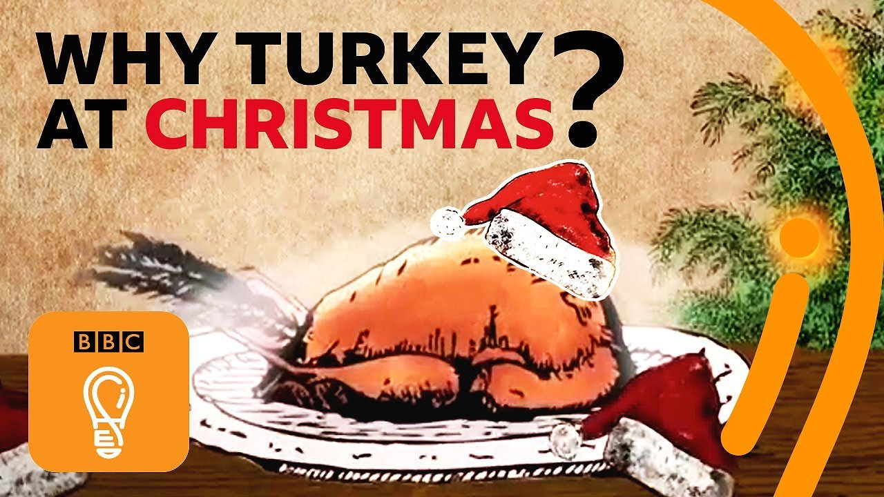 Why Do We Eat Turkey For Thanksgiving  Why do we eat turkey for Christmas and Thanksgiving