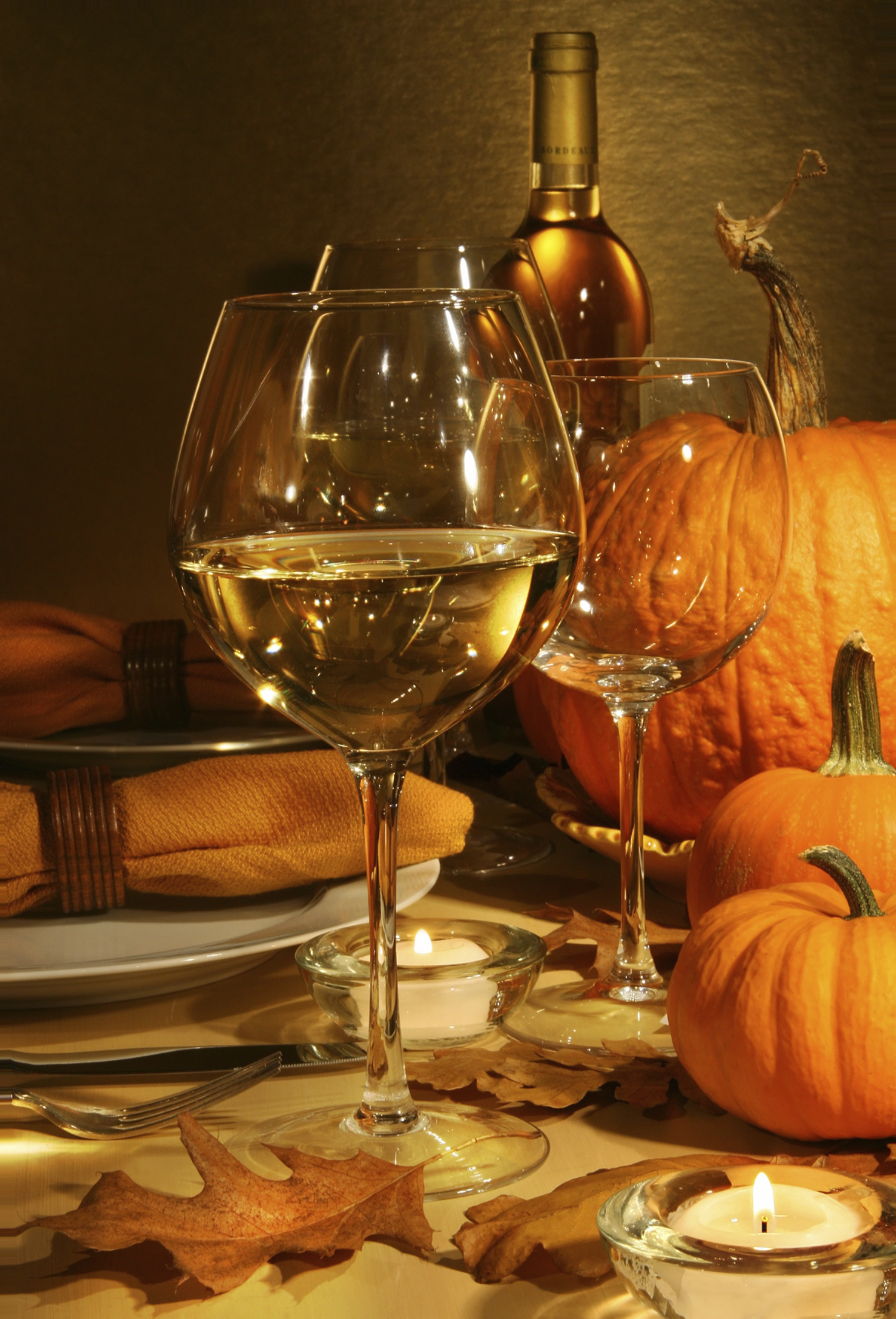 Wine For Thanksgiving Dinner  Introduction to Sedona